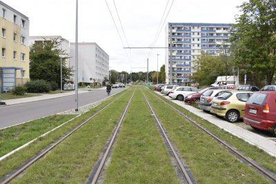 Straßenbahn in Seitenlage mit Rasengleis.